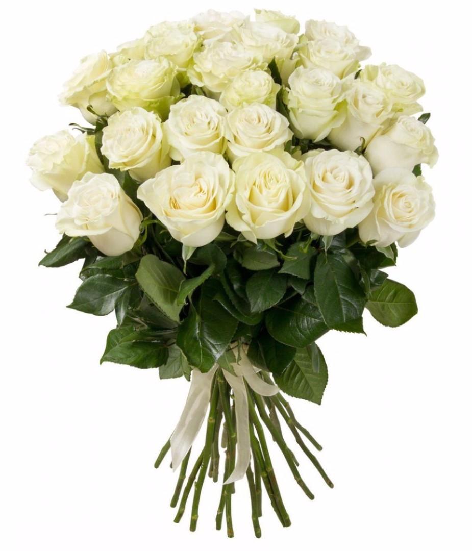 При покупке роз от 25 штук Скидка 10%